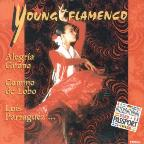 Young Flamenco V.1