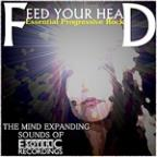 Feed Your Head - Essential Progressive Rock