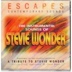 Stevie Wonder Instrumental Tribute