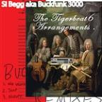 Si Begg aka Buckfunk 3000: The Tigerbeat6 Arrangements