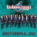 Irreversible... 2012