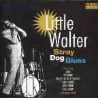 Stray Dog Blues