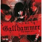 Dawn of Gallhammer