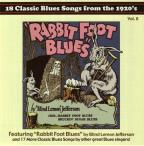 Rabbit Foot Blues: 18 Classic Blues Songs from the 1920's, Vol. 8