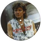 Interview Picture Disc