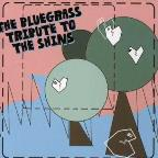 Bluegrass Tribute to the Shins