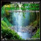 Natural Sounds For Sleep: Relaxing Tropical Rainforest