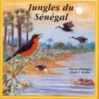 Jungles Of Senegal