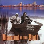 Diamond in the Bluff