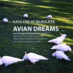 Avian Dreams
