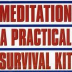 Meditation: Practical Survival Kit