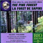 Sounds of Nature: Pine Forest
