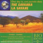 One Day In the Savanna