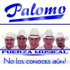 Fuerza Musical