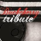 Buckcherry Tribute