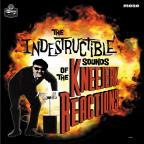 Indestructible Sounds of the Kneejerk Reactions