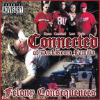 Felony Consequences