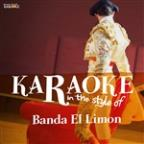 Karaoke - In The Style Of Banda El Limon