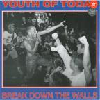 Break Down The Walls LP