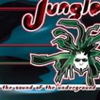 Jungle: The Sound Of The Underground