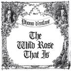 Wild Rose That Is