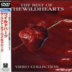 Best Of Wildhearts