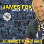 Bluebirds Flying High