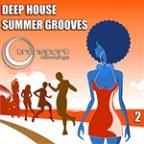 Deep Summer Grooves Vol. 2