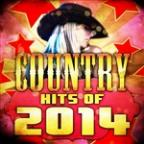 Country Hits Of 2014