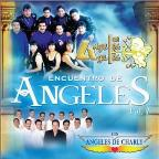 Encuentro de Angeles, Vol. 1