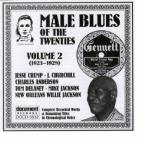 Male Blues of the Twenties, Vol. 2