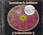 Excursions In Ambience: The 4th Frontier