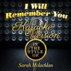 I Will Remember You (In The Style Of Sarah Mclachlan) [karaoke Version] - Single