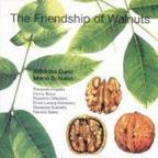 Friendship of Walnuts