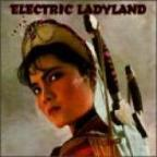 Electric Ladyland V.1