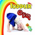 Toddler Gym