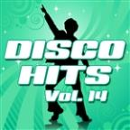 Disco Hits Vol.14
