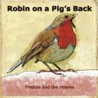 Robin On A Pig's Back