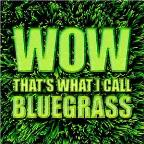Wow That's What I Call Bluegrass