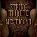 String Tribute to Meshuggah