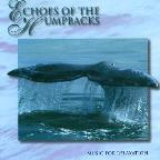 Echoes Of The Humpbacks
