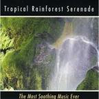 Tropical Rainforest Serenade