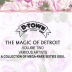 Magic Of Detroit Volume Two