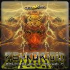Psykorigid Compiled by DJ Psykelo