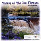 Valley of the Ice Flowers