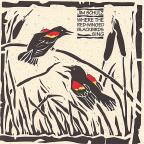 Where The Red-Winged Blackbirds Sing