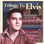 Tribute To Elvis: One Night