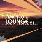 South Beach Flamenco Lounge, Vol. 1
