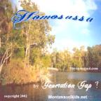Homosassa: Manatee Capital of the World