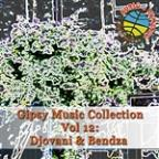 Gipsy Music Collection Vol. 12